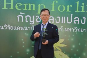 """KKU grows """"Hemp"""" for research, evaluation, and development of cultivars for medicine and industrial purposes"""