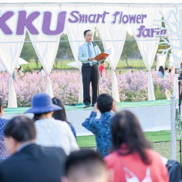Opened KKU Marguerite field, the KKU Smart Flower Farm Project is a beautiful flower bouquet, waiting for you to check in!